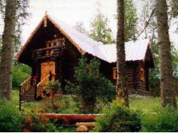 дом в деревне Ломки