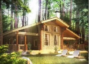 дом в селе Николо-Перевоз