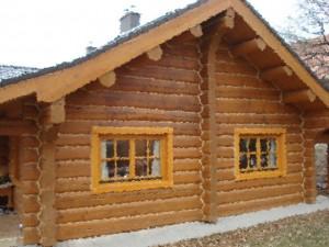 дом в деревне Ченцы