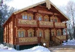дом в селе Еремейцево