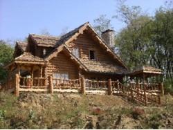 дом в селе Веськово