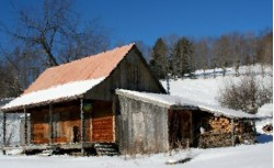 дом в селе Осенево