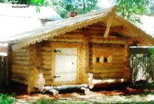 дом в селе Васильково