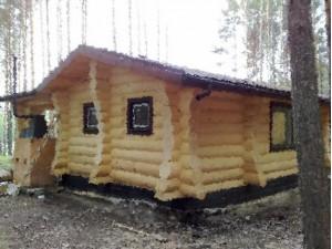 дом в деревне Панино