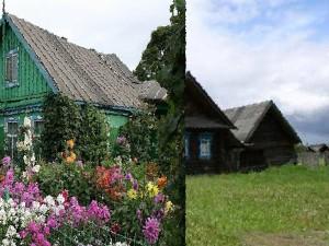 дом в деревне Сидорово