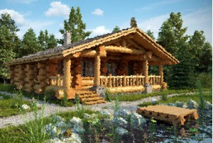 дом в деревне Ракино