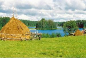 дом в селе Пружинино